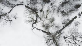 Vista aérea derecho abajo de la cala congelada en el bosque Fotos de archivo
