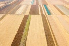 Vista aérea do campo agrícola do outono dos campos fotos de stock royalty free