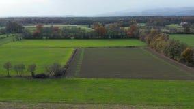 Vista aérea do campo do leste do Eslovênia com campos, floresta e conversão, sebes que dividem campos e prados filme