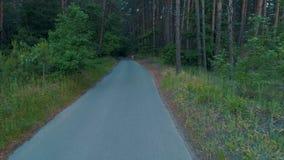 Vista aérea do corredor da aptidão que corre na floresta da floresta da natureza filme