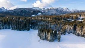 Vista aérea do cume da montanha acima da floresta coberto de neve Foto de Stock