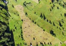 Vista aérea do jardim com pilhas do feno Imagens de Stock Royalty Free