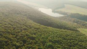 Vista aérea do lago com névoa filme