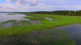 Vista aérea do lago e do parque nacional Razna em Letónia filme