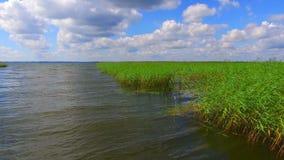 Vista aérea do lago e do parque nacional Razna em Letónia vídeos de arquivo