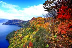 Vista aérea do lago Towada com folha colorida do outono fotos de stock