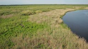 A vista aérea do pântano aterra perto do River Valley filme