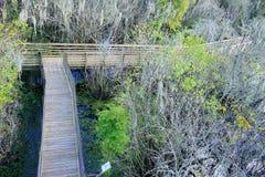 Vista aérea do parque do lago lettuce, fotografia de stock royalty free