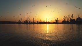 Vista aérea do porto marítimo de Varna e de guindastes industriais, Bulgária Imagem de Stock