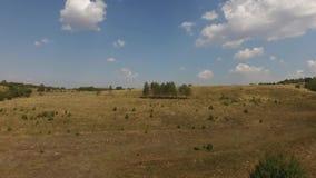 Vista aérea do prado vídeos de arquivo