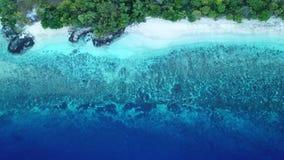 Vista aérea do recife bonito em Indonésia filme