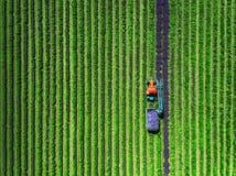 Vista aérea do trator que colhe o campo da alfazema fotografia de stock royalty free