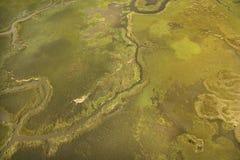 Vista aérea do tributário Imagens de Stock