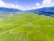 Vista aérea do vale do campo do arroz formosa imagem de stock