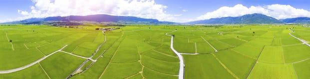 Vista aérea do vale do campo do arroz formosa fotos de stock royalty free
