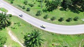 A vista aérea do zangão dos carros está atravessando uma estrada da curva na montanha com floresta verde vídeos de arquivo