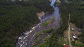 Vista aérea do zangão O rio da montanha flui entre a floresta densa do taiga video estoque