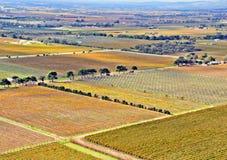 Vista aérea dos vinhedos e dos pomares Imagem de Stock