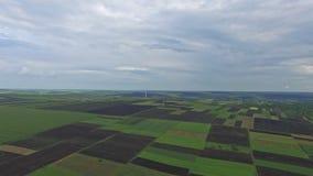 Vista aérea em campos agrícolas infinitos bonitos video estoque