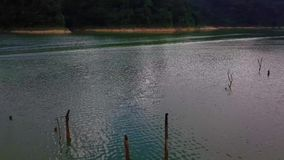 Vista aérea hermosa de Belum real Malasia almacen de video