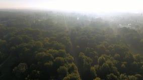 Vista aérea hermosa de un parque de la ciudad en sanssouci de los schloss de Potsdam almacen de video