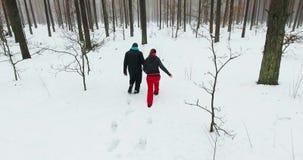 vista aérea 4K de los pares jovenes que caminan en bosque del invierno metrajes