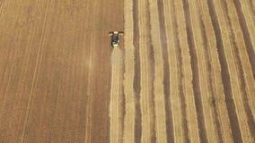 Vista aérea na liga que trabalha no grande campo de trigo, filme