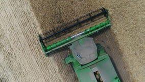 Vista aérea nas ligas e nos tratores que trabalham no grande campo de trigo, ceifeira no campo de trigo, ceifeira verde filme