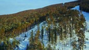 Vista aérea: Os esquiadores vão abaixo da inclinação filme