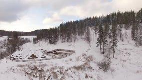 Vista aérea panorámica de una granja para los caballos de la cría en invierno almacen de video