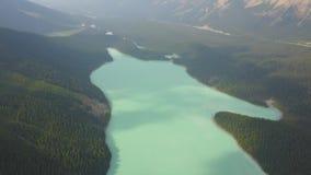 Vista aérea parque nacional del lago Peyto, Banff, Canadá almacen de video