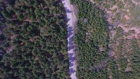 Vista aérea que voa sobre a floresta remendada velha de duas pistas video estoque