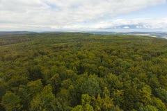 Vista aérea sobre uma floresta Imagem de Stock