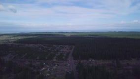 Vista aérea, terras do pinheiro, Nova Zelândia metragem 4k filme