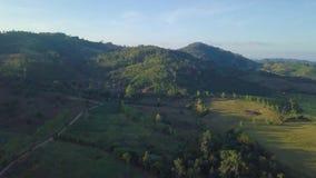 Vista aérea, voando sobre as montanhas e as árvores com nuvens e o céu bonitos no nascer do sol video estoque