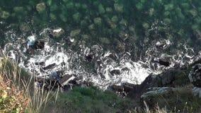 Vista abaixo do penhasco perto da cachoeira da Kilt-rocha vídeos de arquivo