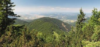Vista ad ovest dal pendio di collina della collina di Suchy in montagne di Mala Fatra Fotografia Stock Libera da Diritti