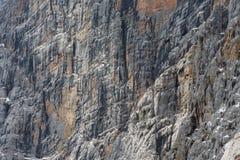 Vista ad un fianco di una montagna verticale delle alpi di Dachstein dell'austriaco Immagini Stock