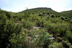 Vista ad un picco di montagna nella sierra del Penon Immagini Stock