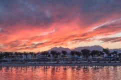Vista ad una linea costiera del mare con le palme al bello tramonto Immagini Stock
