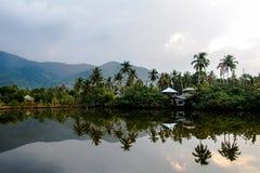 Vista adorabile del lago e delle palme in foresta tropicale sopra il cielo nuvoloso di mattina fotografia stock libera da diritti