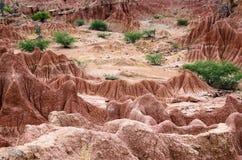 Vista aerea al canyon del deserto dell'arenaria Immagine Stock Libera da Diritti