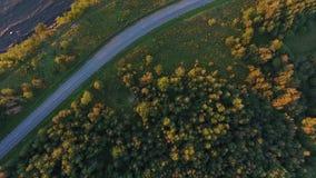 Vista aerea alla scogliera, al mare ed alla guida di veicoli sulla strada stock footage