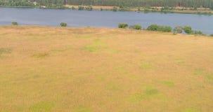 Vista aerea arabile del fiume Volga del landon dal quadcopter di volo sopra la foresta archivi video