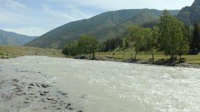 Vista aerea, bella vista di un fiume della montagna un giorno soleggiato nelle montagne di Altai, pascolo dei cavalli selvaggii L archivi video