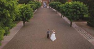 Vista aerea: belle coppie che camminano al grande castello antico 4k archivi video
