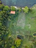 Vista aerea calda della foresta della luce del sole di estate fotografie stock