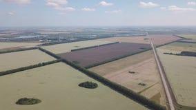 Vista aerea che gira 360 gradi sopra la strada in mezzo a tantissimi campi variopinti coltivare con le piante per agricul video d archivio