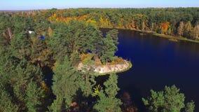 Vista aerea che sorvola il bei fiume e foresta di autunno video d archivio