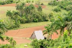 Vista aerea con la terra di azienda agricola della valle di Vinales in Cuba Fotografia Stock Libera da Diritti